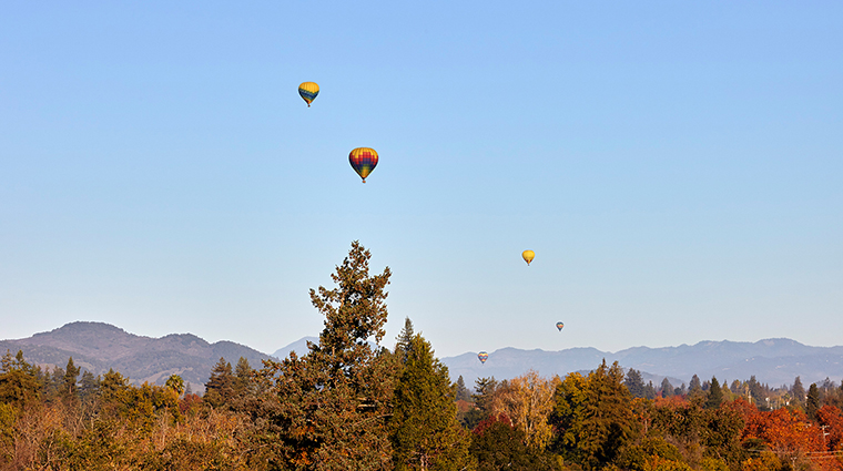 Archer Hotel Napa balloons