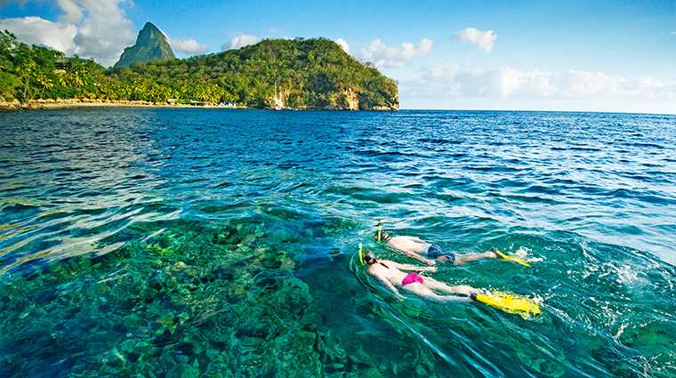 Property AnseChastanet Hotel Activities Snorkeling AnseChastanet