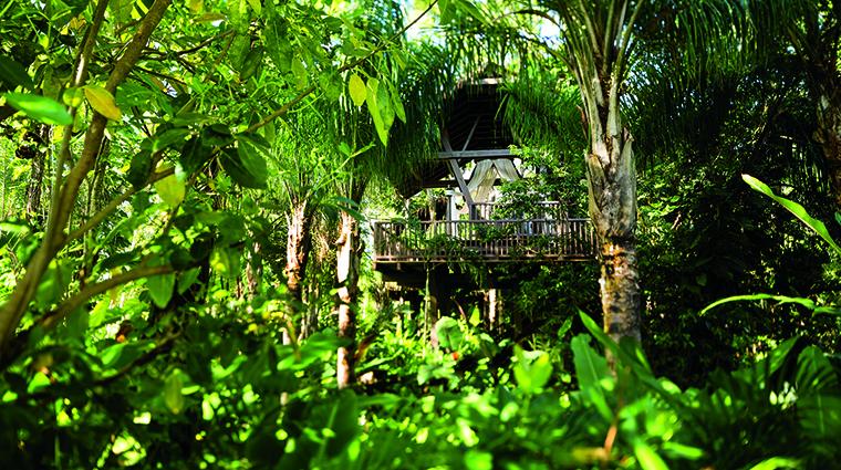 Property SpaBotanico Spa Spa SpaBotanicoTreeHouse CreditTheRitzCarltonHotelCompany