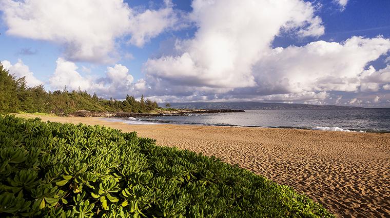 Property TheRitzCarltonKapalua Hotel PublicSpaces FlemingBeach TheRitzCarltonHotelCompanyLLC
