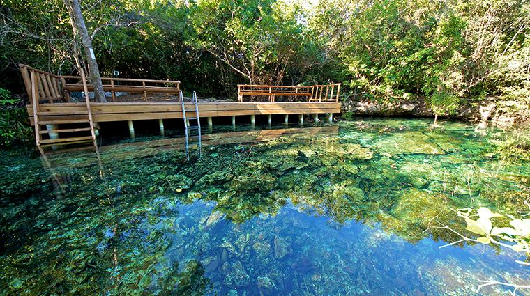 Property TortugaBay Hotel PublicSpaces EcologicalReserveFreshWaterSpringLagoon GrupoPuntacana