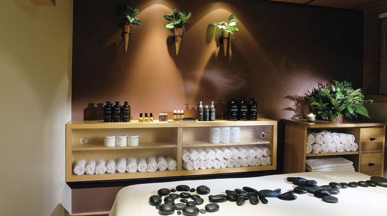 PropertyImage AncientCedarsSpa Spa Style TreatmentRoom CreditTheWickaninnishInn