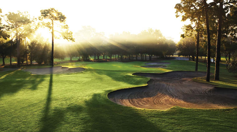 PropertyImage InnisbrookGolfAndSpaResort Tampa Hotel Activities Golf CopperheadCourse CreditSalamanderHotelsAndResorts
