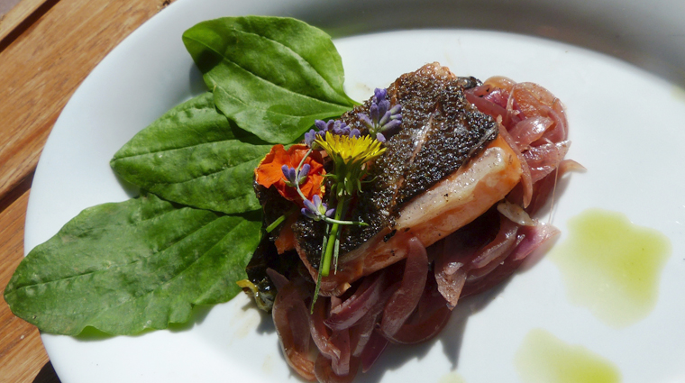 PropertyImage RiverGrillRestaurant Restaurant Food 2 CreditSorrelRiverRanchandSpa