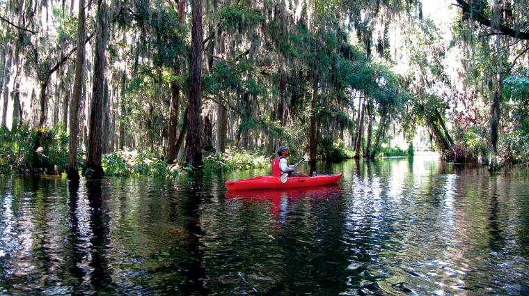 PropertyImage TheRitzCarltonOrlandoGrandeLakes Hotel Activities Kayaking Credit TheRitzCarltonHotelCompanyLLC