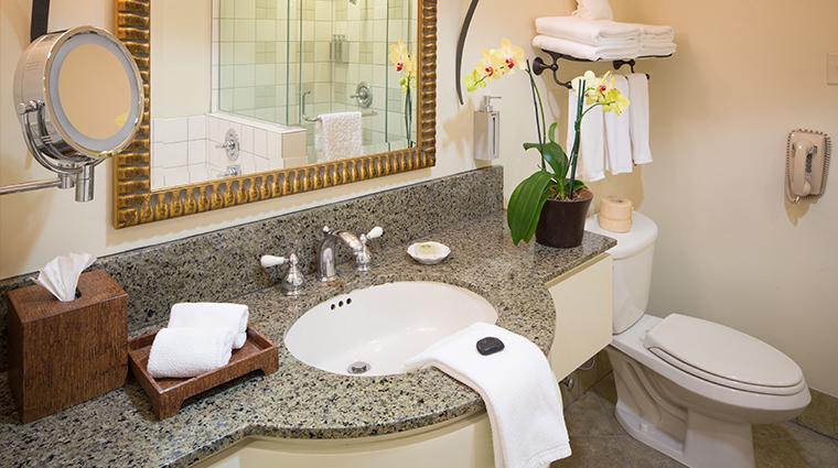 PropertyImage TradewindsCarmel Hotel GuestroomsandSuites Bathroom CreditTradewinds