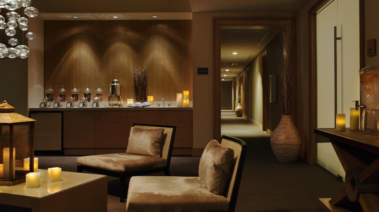 PropertyImage TrumpInternationalHotelAndTowerChicago Hotel Spa Lounge CreditTrumpInternationalHotelAndTowerChicago
