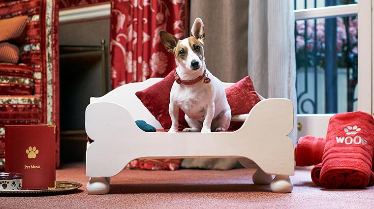 The egerton house hotel pets