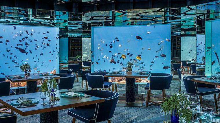 anantara kihavah maldives villas SEA underwater restaurant