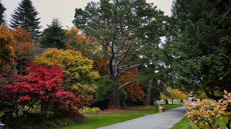 ashford castle gardens2