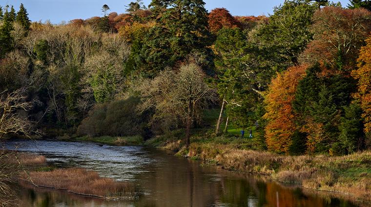 ashford castle gardens3