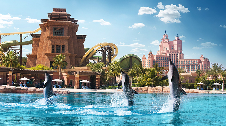 atlantis the palm dolphin bay