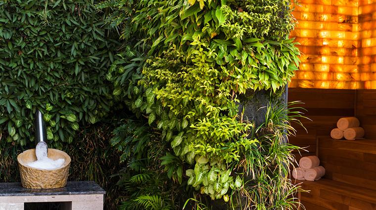 auberge spa chileno bay living garden