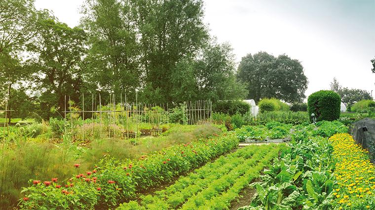 Belmond Le Manoir garden