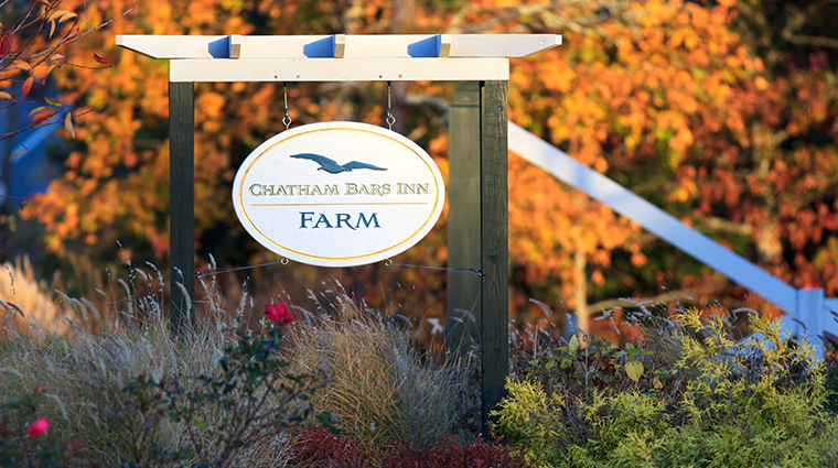 chatham bars inn resort and spa farm