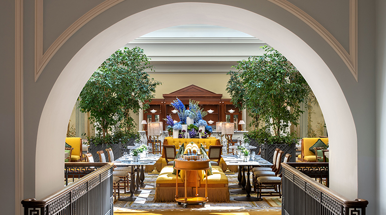 four seasons hotel lion palace st petersburg tea lounge