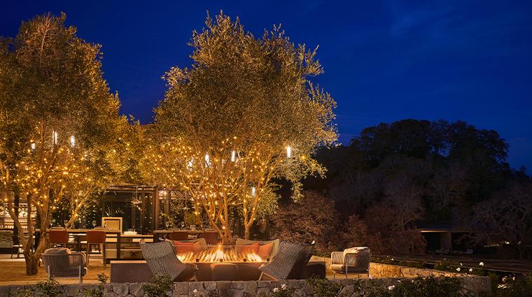 hazel hill olive terrace night