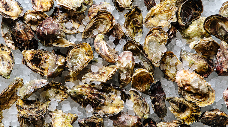 headwaters at the heathman hotel oysters