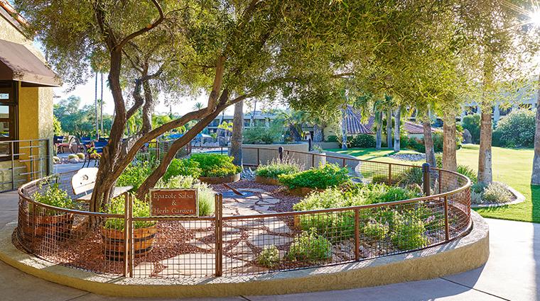 hilton tucson el conquistador golf tennis resort Epazote salsa garden