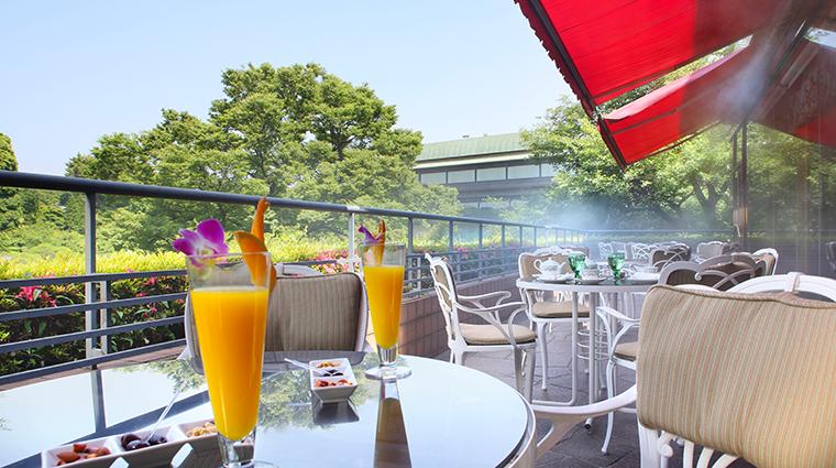 hotel chinzanso tokyo Le Jardin terrace