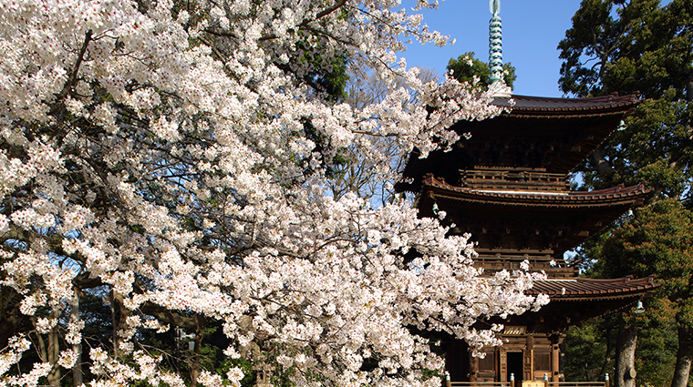 hotel chinzanso tokyo pagoda