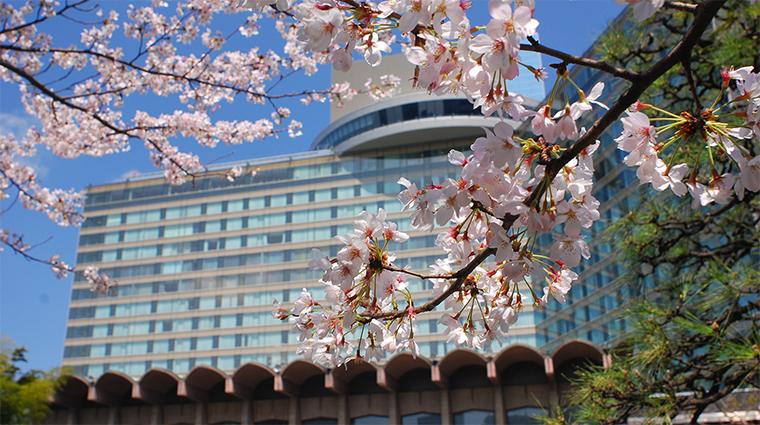 hotel new otani tokyo the main exterior cherry blossom