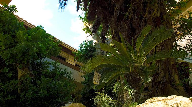 hyakuna garan baniyan tree garden