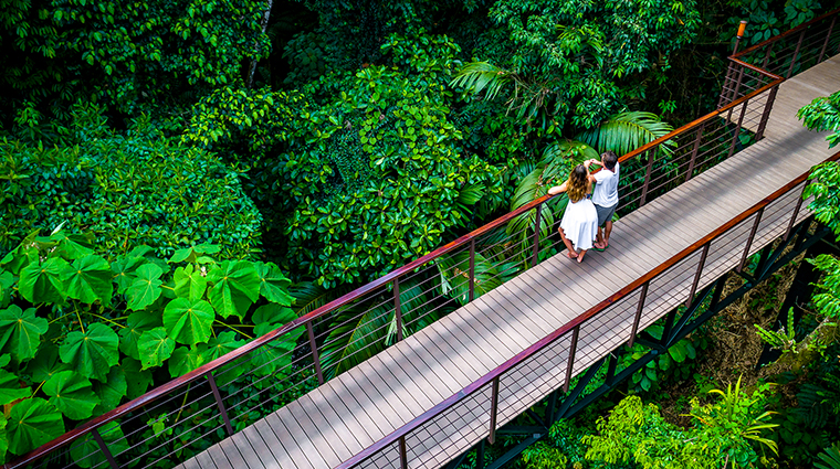 nayara springs rainforest bridge