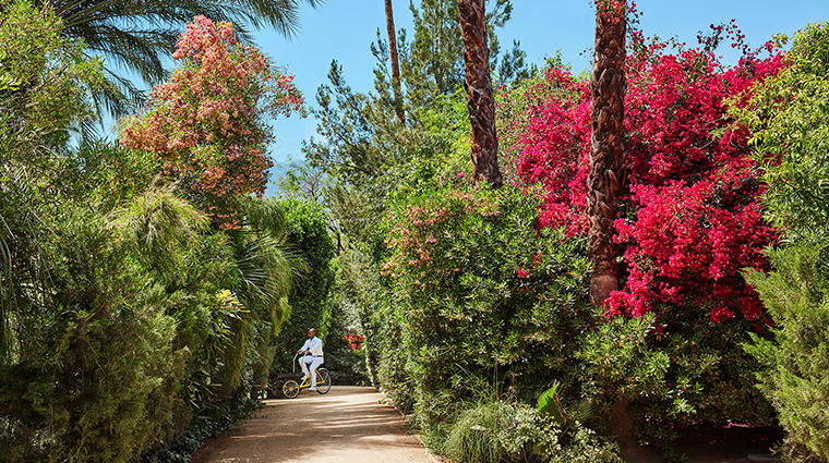 parker palm springs pathway