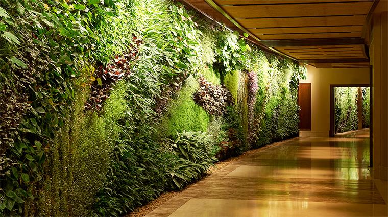 sofitel dubai the palm green wall