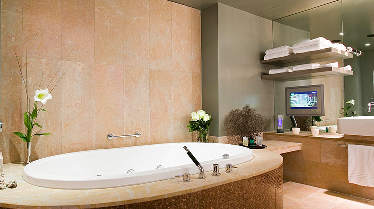 Sofitel Chicago bathroom brown wide