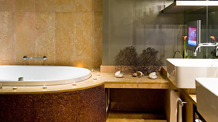 Sofitel Chicago bathroom brown
