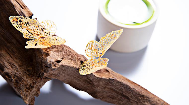 somni butterflies