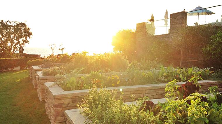 studio garden wide