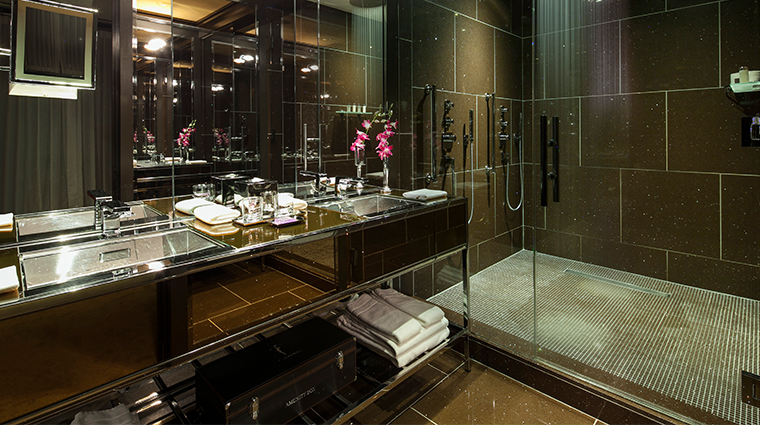the chatwal a luxury collection hotel director suite bathroom