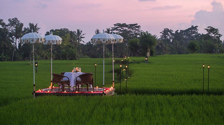 the chedi club tanah gajah ubud bali rice paddy dinner