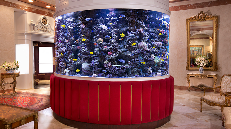 the kimberly hotel lobby aquarium