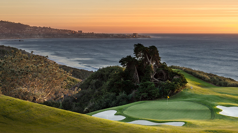 the lodge at torrey pines golf course