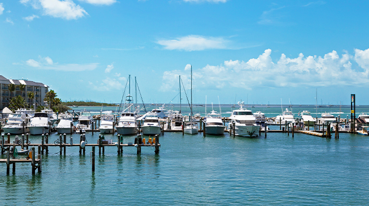 the marker waterfront resort marina view