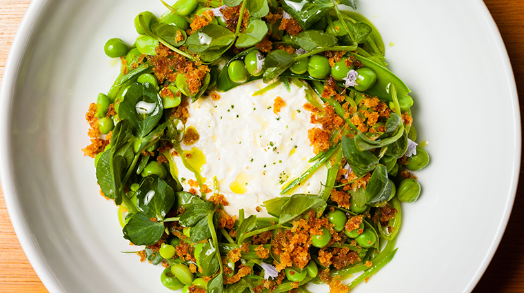 the modern pea salad burrata mint