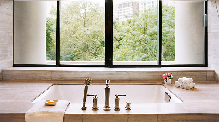 the rittenhouse hotel park suite tub view