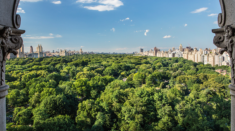 the ritz carlton new york central park central park view