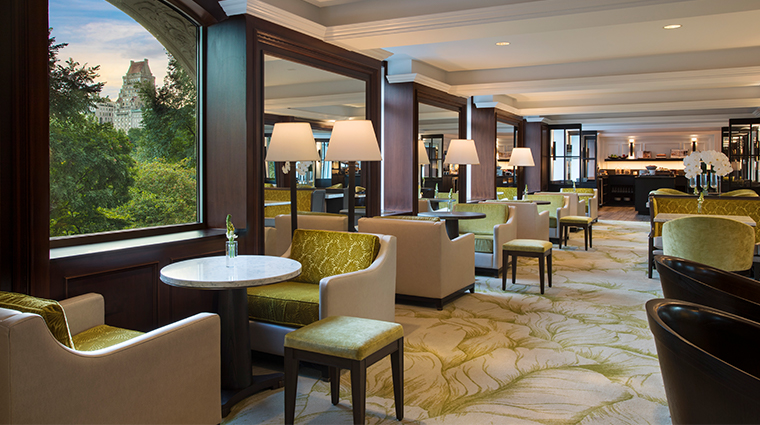 the ritz carlton new york central park club lounge interior