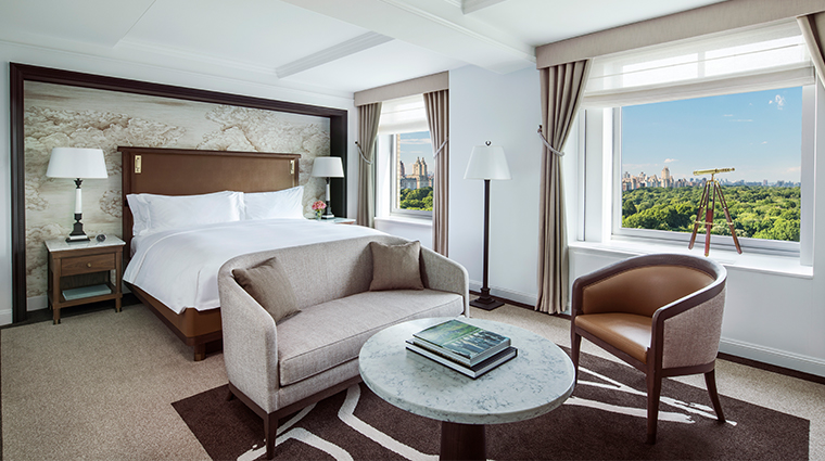 the ritz carlton new york central park grand park view room