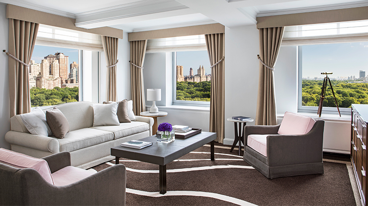 the ritz carlton new york central park premier park suite