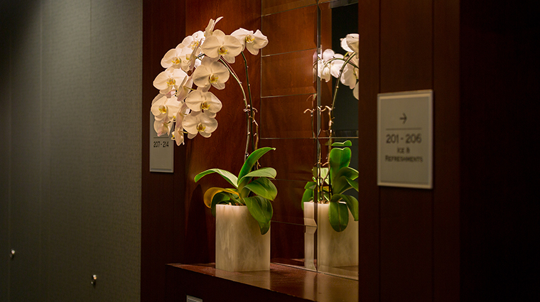 The St. Regis Hotel flowers